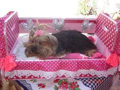 cama de cachorro feitas de caixotes de laranja.