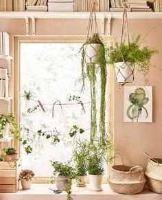 Le piante da interno purificano l'aria, producono ossigeno e aiutano a ridurre lo stress. Si possono disporre in vasi tradizionali, come il portavasi MUSKOT in terraglia bianca, oppure utilizzare per arredare in modo creativo, per esempio incorniciando la sagoma di una finestra - IKEA