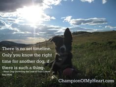 Heart Dog: Surviving the Loss of Your Canine Soul Mate Memorial Ideas, Dog Memorial, Pet Loss, Right Time, Border Collie, Duke, Survival, Snoopy, Angel