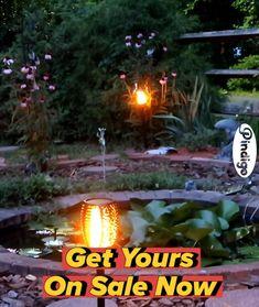 Landscape Lighting, Outdoor Lighting, Indoor Window Garden, Garden Edger, Lawn And Garden, Home And Garden, Large Backyard Landscaping, Wood Shop Projects, Backyard Camping