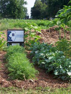 Plano IL Community Garden Page