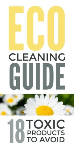 cleaning guide - simple eco friendly ideas and DIY green cleaning and laundr., Eco cleaning guide - simple eco friendly ideas and DIY green cleaning and laundr., Eco cleaning guide - simple eco friendly ideas and DIY green cleaning and laundr. Cleaning Recipes, House Cleaning Tips, Cleaning Hacks, Eco Friendly Cleaning Products, Natural Cleaning Products, Chemical Free Cleaning, Clean Dishwasher, Eco Friendly House, Cleaning