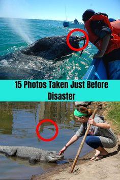 15 Photos Taken Just Before Disaster Weirdest Picture Ever, Just Before, Weird Stories, Weird Pictures, Fails, Death, Hilarious, Photos, Life