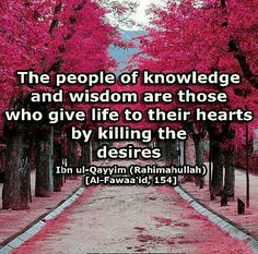 In the Name of Allah, the Most Beneficent, the Most Merciful. To Share Powerful and Insightful Reminders/ Beautiful and Inspiring Islamic Stories/Morals / Quotes / Ahadith / Surahs/ Dua's. Alhamdulillah, Hadith, Arabic Quotes, Islamic Quotes, Knowledge And Wisdom, Quran, Wise Words, Allah, Poems