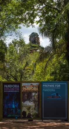 Pandora: World of Avatar Construction Update