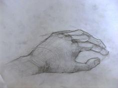 Hand skatch Workshop, Fish, Drawings, Atelier, Sketch, Portrait, Drawing, Resim, Paintings