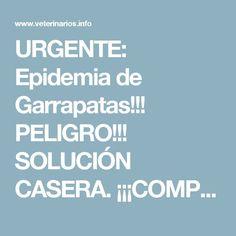 URGENTE: Epidemia de Garrapatas!!! PELIGRO!!! SOLUCIÓN CASERA. ¡¡¡COMPARTE!!!   Veterinarios.info