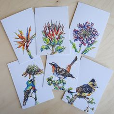 My new A6, blank greeting cards are available individually, in packs of three (choose between either SA flowers or garden birds) and a value six pack. Every card includes a plain, brown envelope. Not only are these gift cards practical, they are certainly pretty enough to frame! 😍 #stationary #beautifulstationary #greetingcards 🇿🇦 The Happy Struggling Artist Gift Cards, Greeting Cards, Garden Birds, Wood Pallets, Stationary, Envelope, Flora, Brown, Handmade Gifts