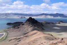 Les steppes de l'Altaï, Mongolie