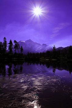 It shone like a star, beautiful and bright. Rays danced out from the moon, casting a deep purple glow onto the river water below. The lavender lake ran still as the black trees stood like the warriors they are. They guarded and hid the forest creatures from the depths of the pond, for when it was purple, it was poison.