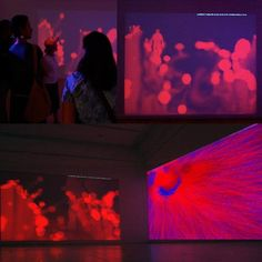 Marcia Lyons, RED (Force Fields), No. 1 and No. 2 (installation), 2011, Computer program captures and displays two interactive fields of digital da,
