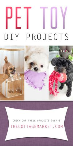 Looking for that PAWFECT gift for your pet  Why not try one of these Pet  Toy DIY Projects. Your Dog and Cat will love your creation for sure! Woof  Meow!!! 9389249bd1