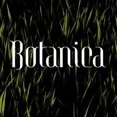 Botanica Création d'une police de caractère