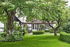 Lovely backyard with hedges, hostas and trees. Höganäs, Skåne, Sweden