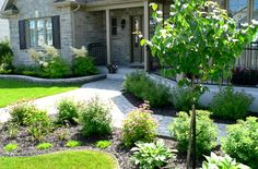 Front Yard Landscape Design With Boxwood Hedges And Flowers Landscaping Pinterest Front