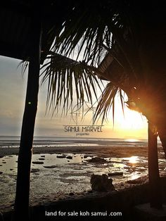 Sunset from a land for sale in Nathon area