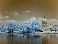 Infrared Photographs | Digital #Photography Magazine
