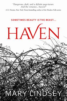 HAVEN by Mary Lindsey coming 11/7/17 in hardcover and ebook.