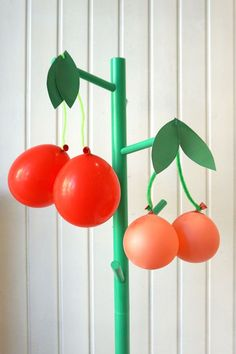 Ballon-Früchte als P