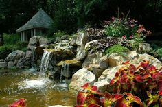 It is a common myth that you can't leave your pond fish outside once the cold sets in. Actually, fish do just fine during winter. That said, Deck and Patio's Ou… Pond Maintenance, Pond Water Features, Garden Waterfall, Natural Swimming Pools, Pond Design, Garden Structures, Water Garden, Home And Garden, Backyard