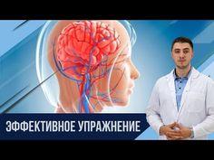 Восстановить мозговое кровообращение за 5 мин - YouTube Health, Fitness, Youtube, Health Care, Youtubers, Youtube Movies, Salud