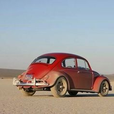 Beetle Convertible, Car Volkswagen, Datsun 510, Vw Beetles, Automobile, Vw Bugs, Cars, Classic, Vehicles
