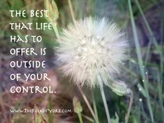 The best that life has to offer is outside ofyour control. www.TheFolkofYore.com