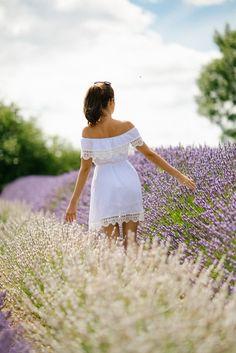 Norfolk Lavender fie