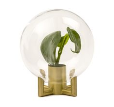 Orb is a vase where the glass itself creates frames in the plant. The insert is made of brass and the glass is hand blown. Orb is available in two sizes. Designed by Viktor Erlandsson. Metal Vase, Scandinavian Design, Decoration, Accessories Shop, Snow Globes, Floral Arrangements, Holiday Gifts, Light Bulb, Interior Decorating