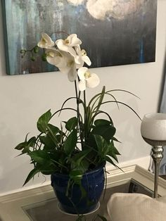 Is It Real? Or is It Silk?  Silk Flowers With Real Plants