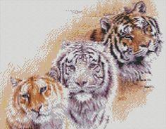cross stitch kit beauty of a tiger - Folksy