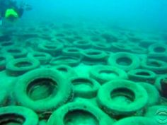 Failed artificial reef cleanup.