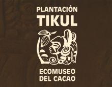 Plantación Tikul - Ecomuseo del Cacao  www.ExploringLifestyles.com