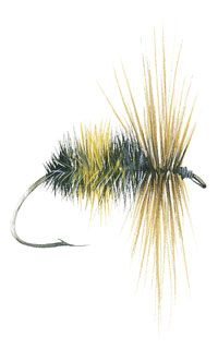 Bumble Bee trout fly-Bumble Bee trout fishing fly-nzfishing