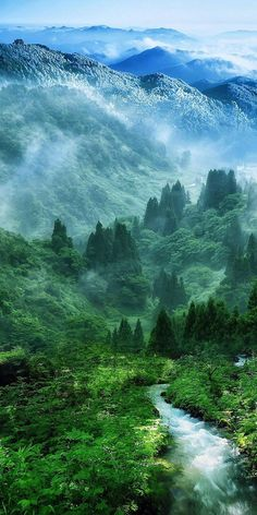 Nature Mist Mountain Wood Forest River Landscape iPhone 6 plus wallpaper Beautiful World, Beautiful Places, Beautiful Pictures, Beautiful Scenery, Natural Scenery, Beautiful Nature Wallpaper Hd, Beautiful Nature Scenes, Beautiful Beautiful, Animals Beautiful