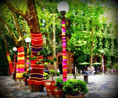 "Suzanne Tidwell's ""yarn bombing"" in Seattle's Pioneer Square"