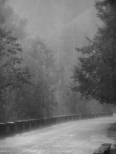 It is pouring here in Oregon.  Can't get enough of the sound of the rain. So very grateful for God's gift to nourish the earth and His children. Thinking of those enduring the snow, with more storms coming. Praying for your safety. God Bless.  CH.
