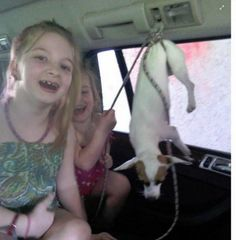 Quick links to share the petition: Prosecute Florida mother for letting her kids mistreat family dog! | Yousign.org