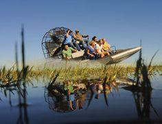 Go airboating in the Florida Everglades. Did this once as a kid and I turned purple.