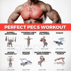 The Superset Chest Workout - There are many types of training available which promote the muscle growth of chest. Out several workouts, super-sets are very effective for gaining muscles. The supersets are very effective to pump chest muscle growth. The ch Body Fitness, Fitness Tips, Fitness Motivation, Fitness Workouts, Fitness Outfits, Fitness Planner, Fitness Women, Female Fitness, Fitness Quotes