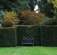 bench + hedges #GISSLER #interiordesign