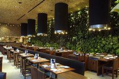 Green wall.  Japonez restaurant, México
