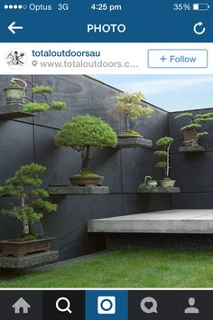 Bonsai shelves create simplicity in Japanese Garden space.