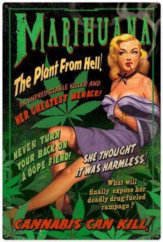 dit is echt typisch een affiche over wiet. omdat er plaatjes van wietplanten op staan en er teksten op staan.