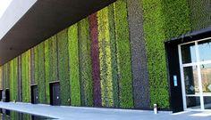 green wall exterior - Google Search
