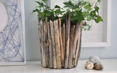 Driftwood Vase Usedriftwood (or even branches collected from the yard!) and an empty containertomakethis pretty vase. Its easy inexpensive and fun! The post Driftwood Vase was featured on Fun Family Crafts. Driftwood Planters, Driftwood Projects, Driftwood Art, Driftwood Ideas, Diy Home Decor Projects, Decor Crafts, Home Crafts, Diy Crafts, Craft Projects