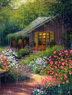 Cozy Rainy Day, Rainy Days, Pictures To Paint, Cool Pictures, Beautiful Pictures, Rain Wallpapers, Pleasant View, Floating Lights, Good Night Gif