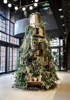 PORTFOLIO / GREEN FINGERS is a creative company which proposes an independent style of greens. Christmas Store Displays, Vintage Store Displays, Simple Christmas, Christmas Tree, Xmas, Plantas Indoor, Garden Center Displays, Flower Shop Design, Garden Shop