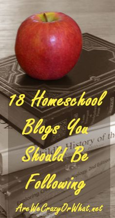 Here is a rundown of 18 great homeschool blogs. You should be following each for different reasons. This post is complete with links and descriptions. #beselfreliant