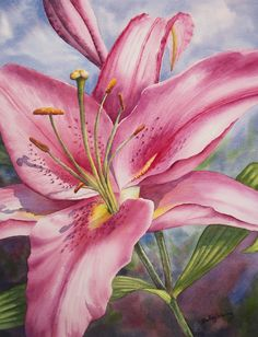Pink Stargazer Lily, watercolour by Shelley Waring Fall Canvas Painting, Lily Painting, Canvas Art, Watercolor Flowers, Watercolor Paintings, Watercolors, Lilies Drawing, Art Fund, Flower Art